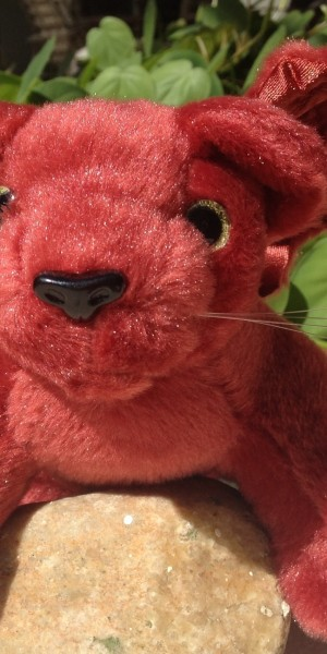 Plushy - Ellie, closeup (cropped)
