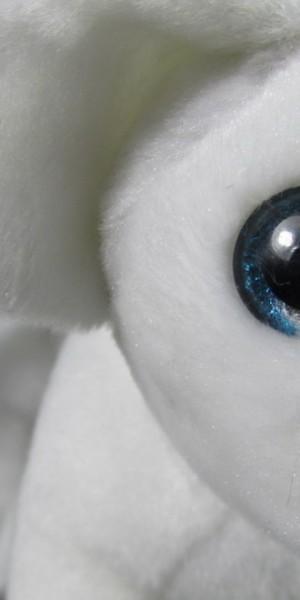 Steli's sparkling eye